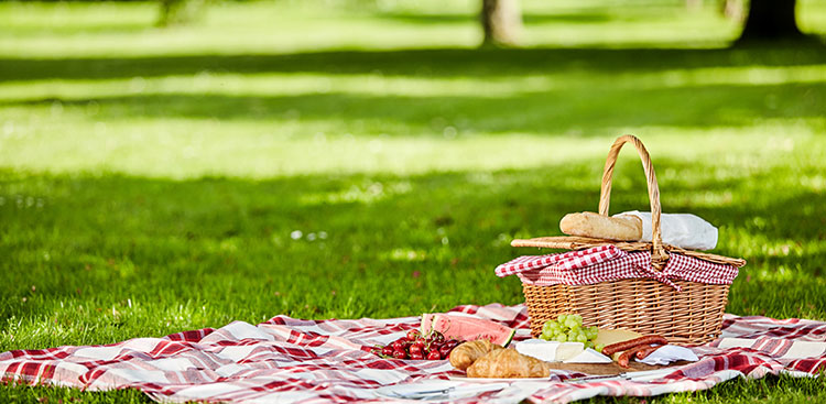 Bocadillos para picnic