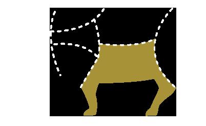Parte del cerdo